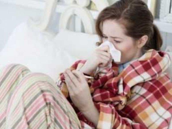 В Совфеде предложили ввести 100% оплату больничных во время эпидемий