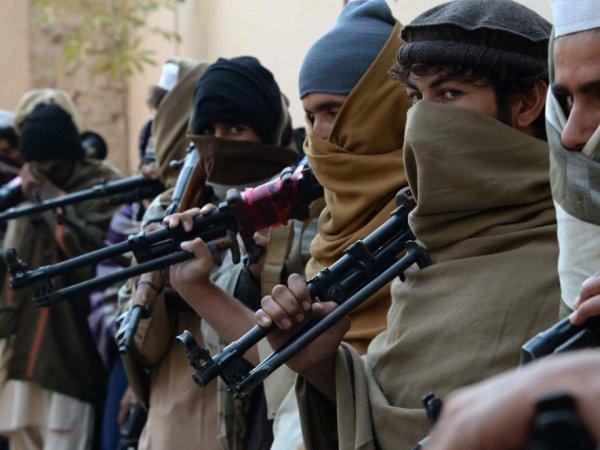 НАК предупреждает: состоящий из выходцев с Кавказа батальон ИГИЛ готовит теракты в России