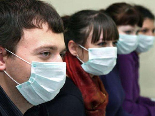 Свиной грипп 2016, симптомы настораживают: пик эпидемии придется на начало февраля, заявили в Минздраве