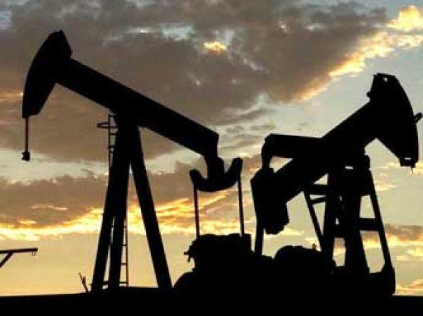 Цена барреля нефти Brent побила антирекорд 2004 года