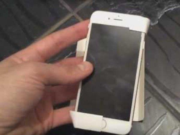 В Сеть попало первое видео с новейшим iPhone