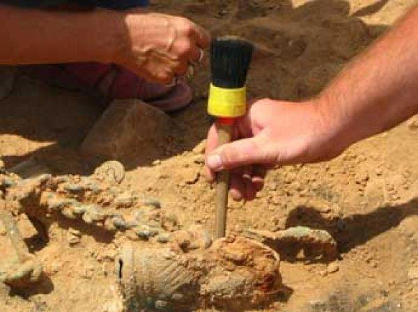 В Британии на детской площадке нашли скелет пирата