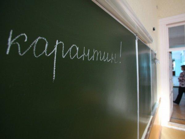 Свиной грипп, симптомы: в Москве отменяют карантин по гриппу и ОРВИ