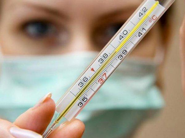 Свиной грипп, симптомы эпидемии: ажиотаж в России 2016 вокруг болезни назвали искусственным