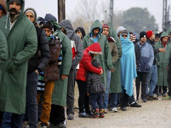 Бельгия впервые в ЕС отправила домой мигрантов из Ирака чартером
