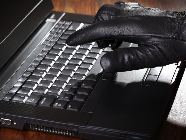 Полиция пресекла деятельность кибербанды, готовившей масштабное хищение денег из банков РФ