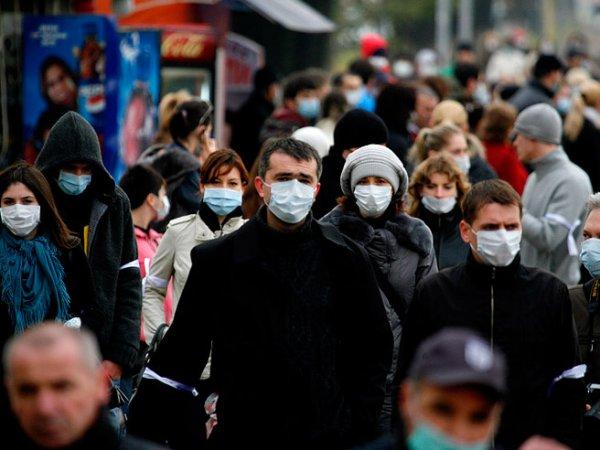 Свиной грипп, симптомы: эпидемия в России 2016 вышла на пиковые значения