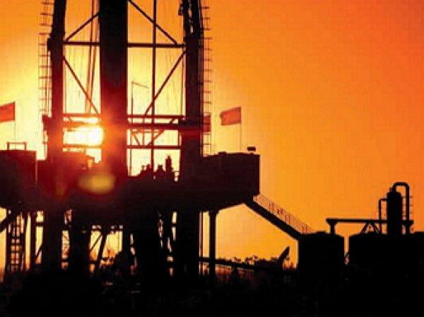 Bloomberg: Россия и Саудовская Аравия обсудят рынку нефти