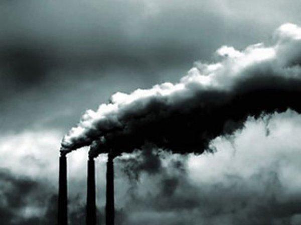 Ученые: ежегодно более 5,5 млн человек в мире умирают от загрязненного воздуха
