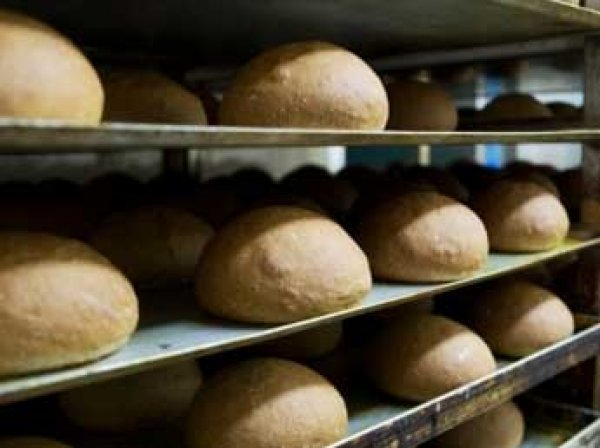 Скандал: в Саратове закрыли хлебокомбинат из-за батона с крысиной головой