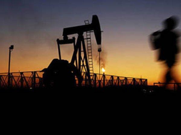 Цена барреля нефти Brent превысила