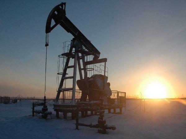 Курс доллара на сегодня, 9 марта 2016: Россию заподозрили в создании нового нефтяного картеля  -СМИ