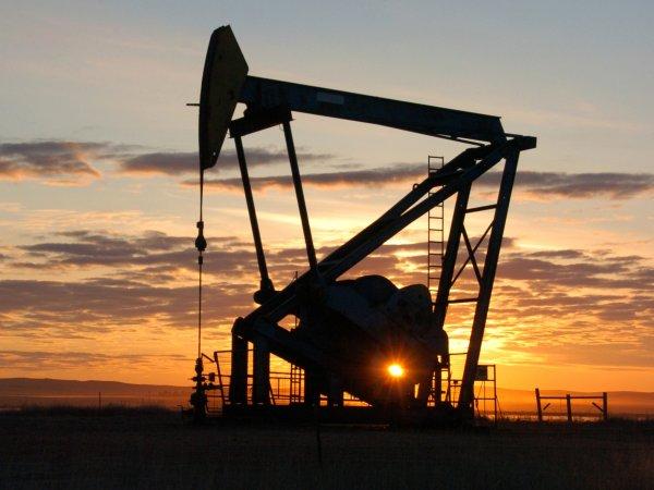 Курс доллара на сегодня, 16 марта 2016: у нефти есть шанс на очередной виток роста – эксперт