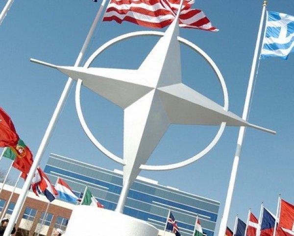 Источник в МИД: НАТО прибежали умолять Россию провести встречу