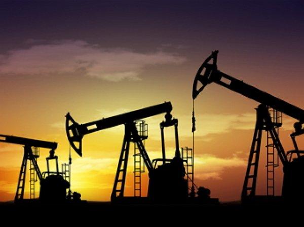 Россия и Саудовская Аравия договорились заморозить добычу нефти