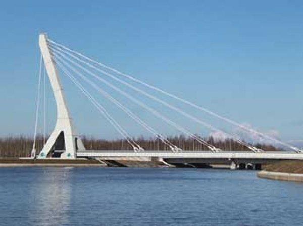 В Петербурге в честь Ахмата Кадырова назовут мост