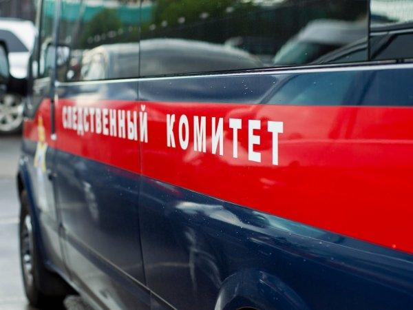 В Пермском крае нашли повешенными мать и 10-летнюю дочь