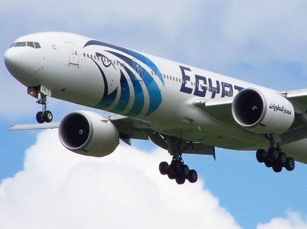 Самолет Париж – Каир и возможный теракт на нем повлияют на возобновление авиасообщения РФ и Египта – СМИ
