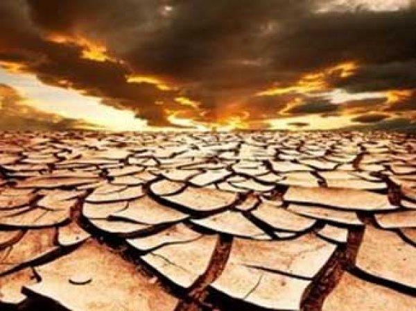 Ученые: уже через 10 лет на Земле наступит голод