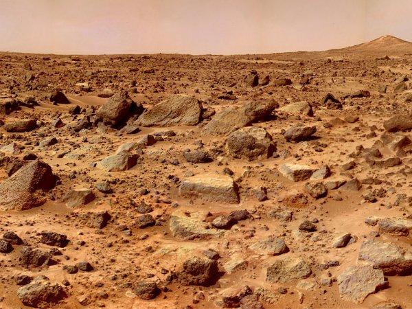 """На Марсе нашли """"череп йети"""" (ФОТО)"""