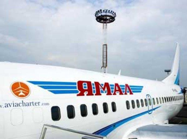 Двигатель вылетевшего из Домодедово самолета отказал из-за попадания птицы