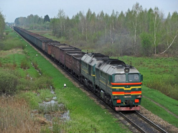 В Подмосковье две школьницы погибли под колесами поезда