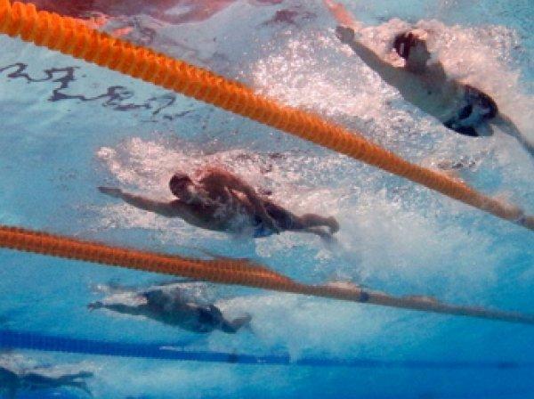 Семь российских пловцов не допущены к участию на Олимпиаде в Рио