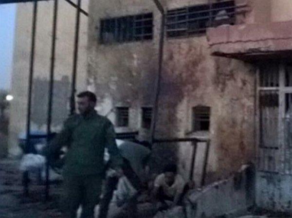 В сирийской Эль-Хасаке прогремел взрыв, жертвами стали не менее 30 человек