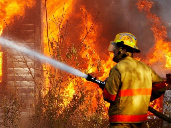 Пожар в Подмосковье унес жизни семьи из четырех человек