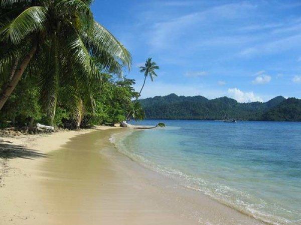 На пляже Фиджи нашли отрезанную человеческую голову