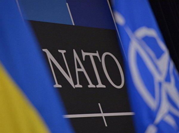США огласили условия вступления Украины в НАТО
