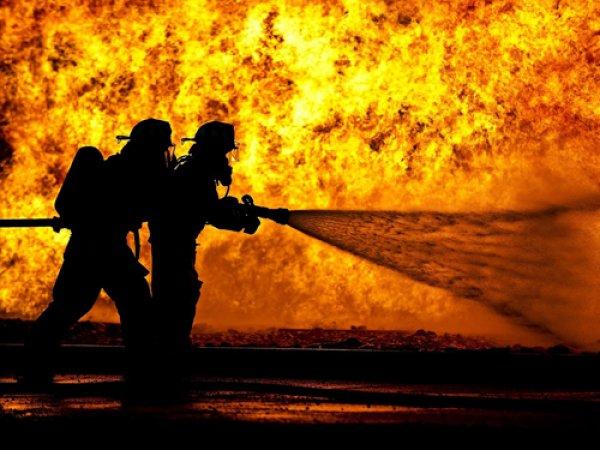 Рослес потратил 76 млрд рублей на закупку бесполезного для тушения пожаров оборудования