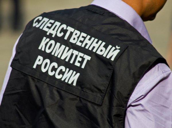 В Хакасии нашли труп связанной и зверски убитой школьницы