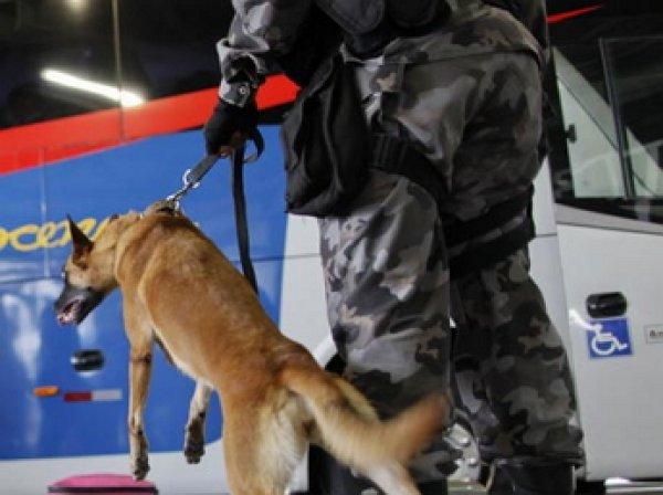 На Играх в Рио обстреляли официальный автобус с журналистами, есть пострадавшие