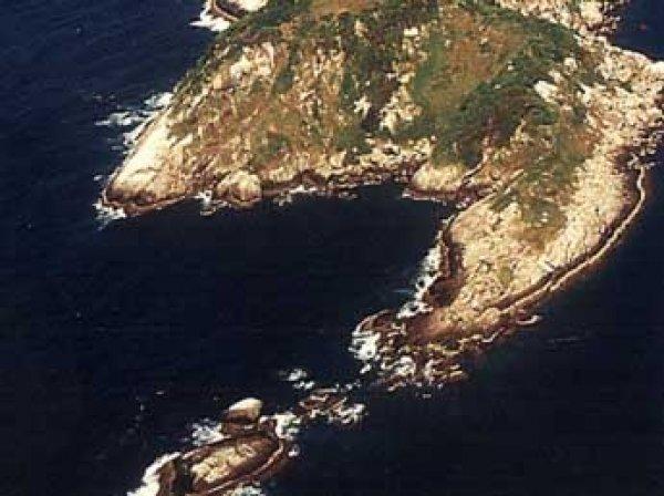 Ученые нашли в Бразилии самый опасный остров в мире