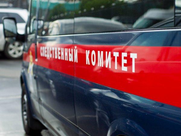Стали известны подробности жуткого убийства под Екатеринбургом, где таксист обезглавил девушку
