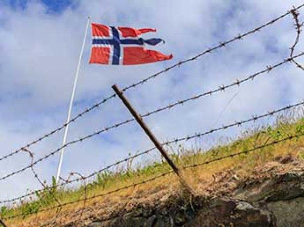 Норвежские пограничники задержали четырех человек за камни в Россию