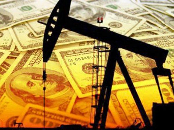Курс доллара на сегодня, 10 августа 2016: доллар поднимется до 72 рублей, нефть упадет до  – эксперт