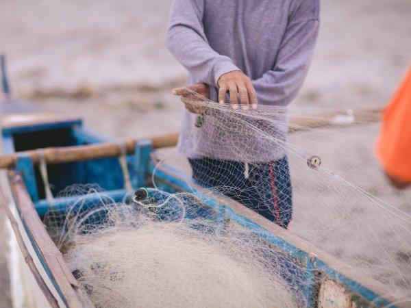 На Филиппинах рыбак 10 лет хранил 34-килограммовую жемчужину стоимостью  млн (ФОТО)