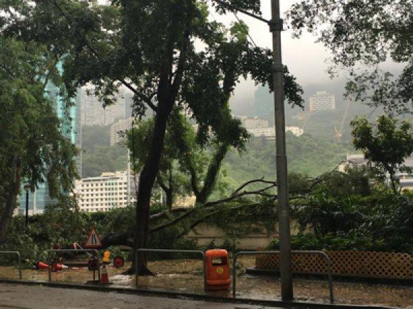 В соцсетях публикуют ФОТО и ВИДЕО сильнейшего за последние 30 лет тайфуна в Китае (ФОТО, ВИДЕО)