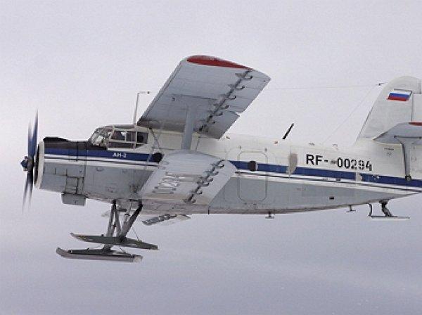Под Новосибирском пропал самолет Ан-2. МЧС ведет поиски