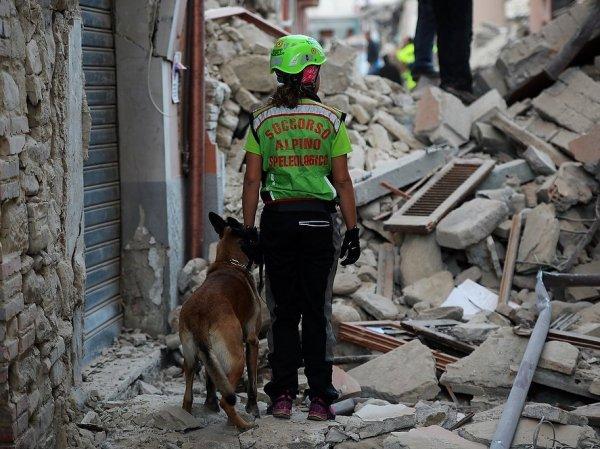 Землетрясение в Италии 24 августа 2016: разрушен город Аматриче, погибли 14 человек (ФОТО, ВИДЕО)