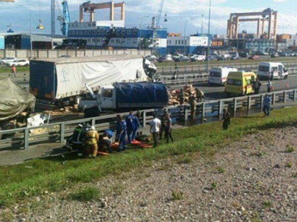 Крупное ДТП в Петербурге: грузовики с военными попали в ДТП на КАД, 8 пострадавших