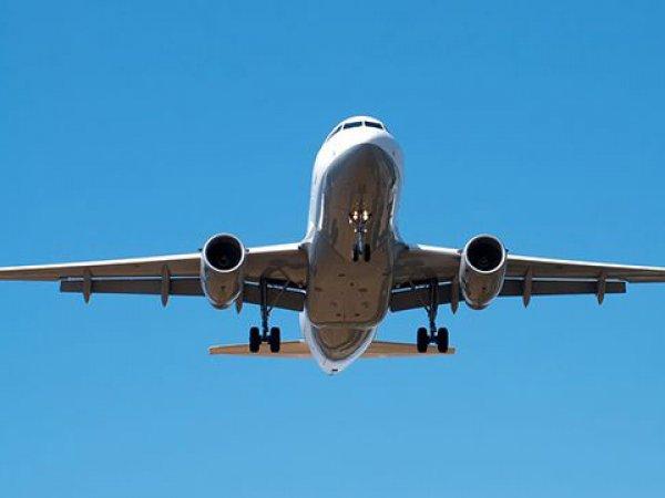 На борту самолета Новосибирск-Москва чуть не изнасиловали 9-летнюю девочку