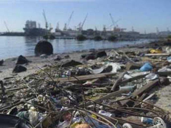 """СМИ: олимпийцам в Рио придется плавать в """"токсичном бульоне"""" (ВИДЕО)"""