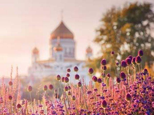 Google обнародовал свой ТОП самых популярных туристических направлений России