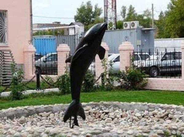 Из колонии для пожизненно осужденных «Черный дельфин» впервые в истории сбежал заключенный