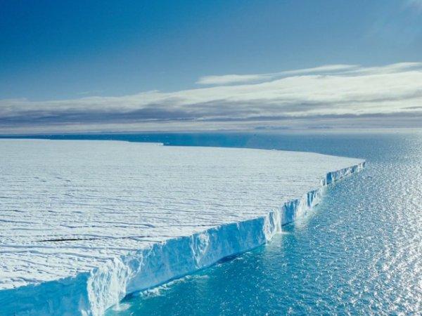 Ученые нашли подо льдами Антарктиды внеземную жизнь