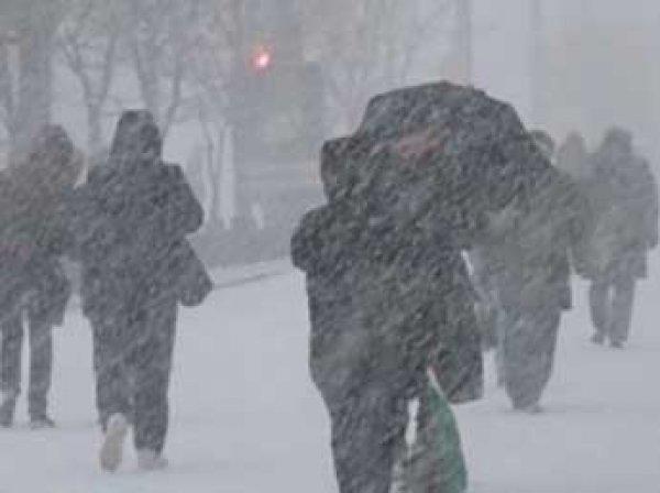 Метеорологи США: Россию парализует жуткий арктический холод