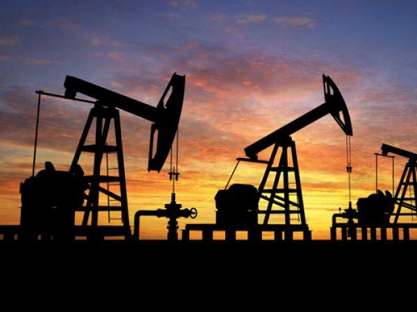 Курс доллара на сегодня, 24 октября 2016: эксперты уверены в улучшении рынка нефти и курса рубля
